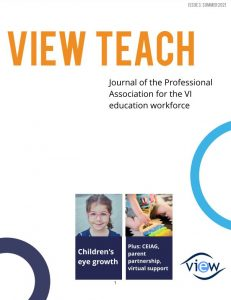Front cover of VIEW Teach
